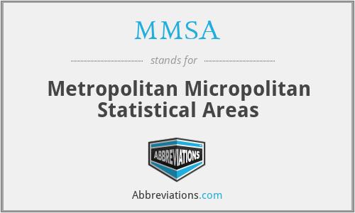 MMSA - Metropolitan Micropolitan Statistical Areas