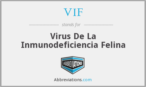 VIF - Virus De La Inmunodeficiencia Felina