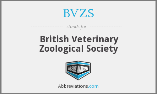 What does BVZS stand for?
