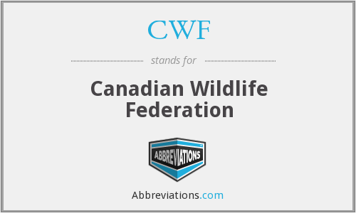 What does CWF stand for?