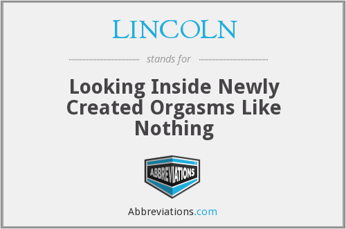 LINCOLN - Looking Inside Newly Created Orgasms Like Nothing