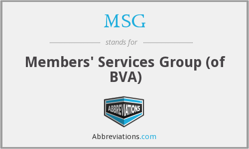 MSG - Members' Services Group (of BVA)