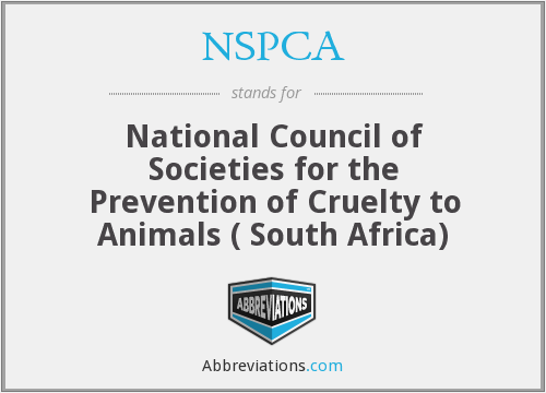 What does NSPCA stand for?