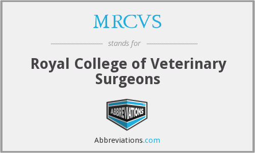 What does MRCVS stand for?