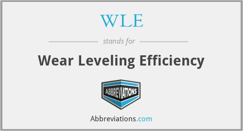 WLE - Wear Leveling Efficiency