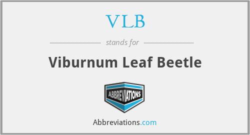 VLB - Viburnum Leaf Beetle