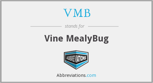 VMB - Vine MealyBug