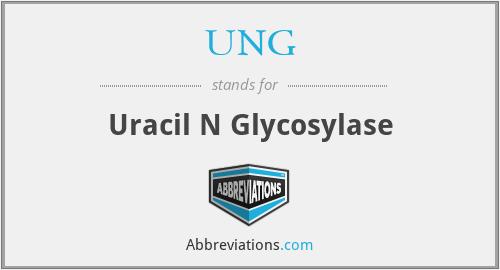 UNG - Uracil N Glycosylase