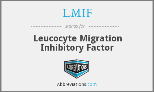 LMIF - Leucocyte Migration Inhibitory Factor
