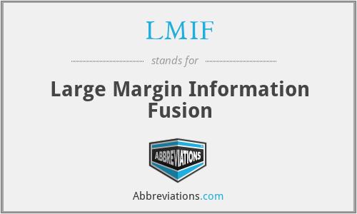 LMIF - Large Margin Information Fusion