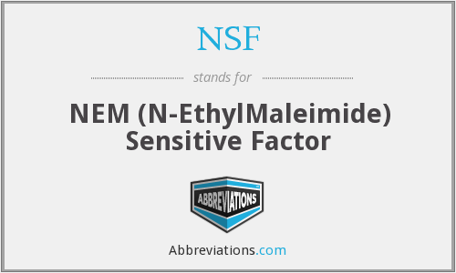 NSF - NEM (N-EthylMaleimide) Sensitive Factor