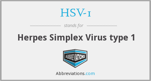What does HSV-1 stand for?