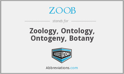 What does ZOOB stand for?