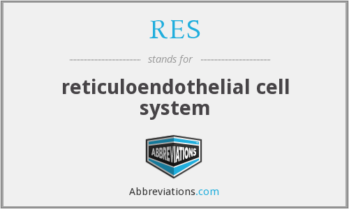 RES - reticuloendothelial cell system