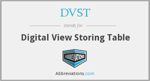 DVST - Digital View Storing Table