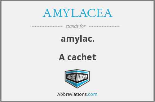What does AMYLACEA stand for?
