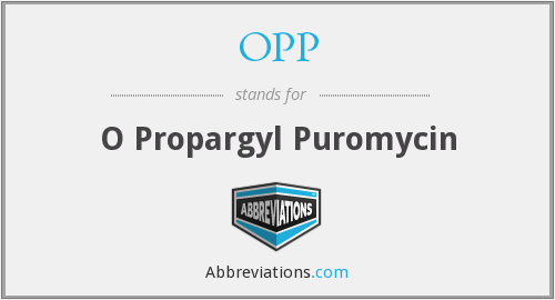 OPP - O Propargyl Puromycin
