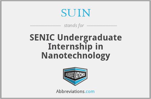 SUIN - SENIC Undergraduate Internship in Nanotechnology