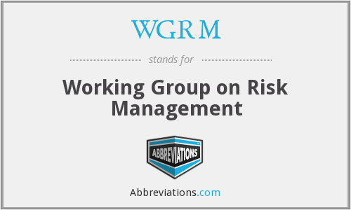 WGRM - Working Group on Risk Management