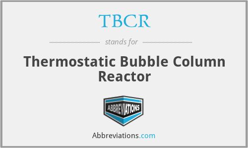 TBCR - Thermostatic Bubble Column Reactor