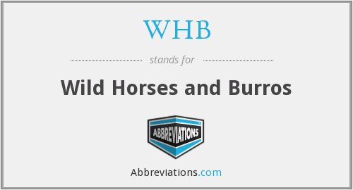WHB - Wild Horses and Burros