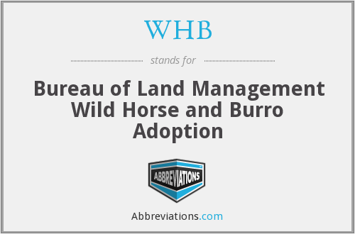 WHB - Bureau of Land Management Wild Horse and Burro Adoption