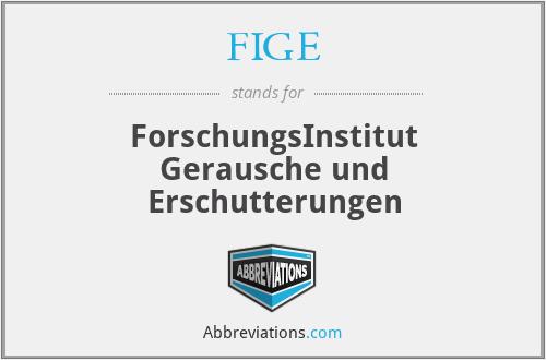 FIGE - ForschungsInstitut Gerausche und Erschutterungen