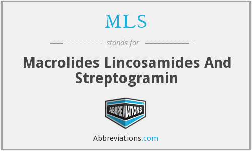 MLS - Macrolides Lincosamides And Streptogramin