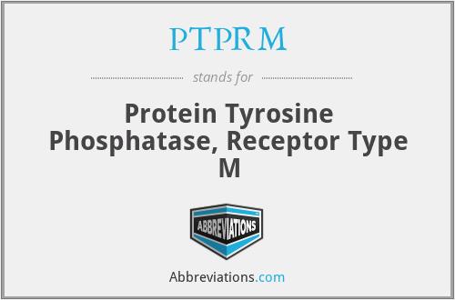 PTPRM - Protein Tyrosine Phosphatase, Receptor Type M