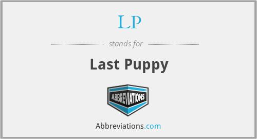 LP - Last Puppy