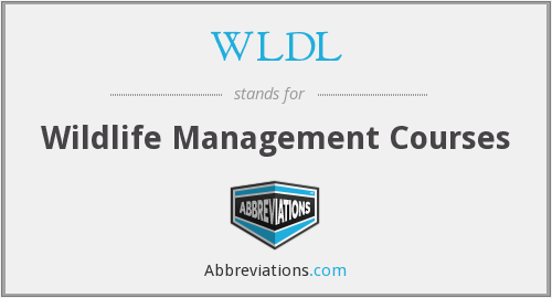 What does WLDL stand for?