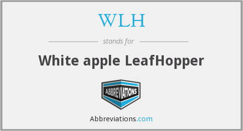 WLH - White apple LeafHopper