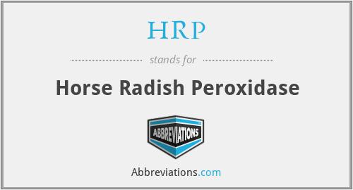 HRP - Horse Radish Peroxidase
