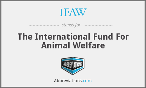 IFAW - The International Fund For Animal Welfare