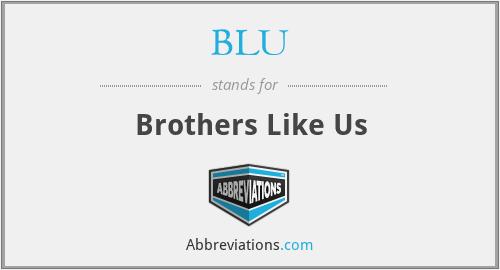 BLU - Brothers Like Us
