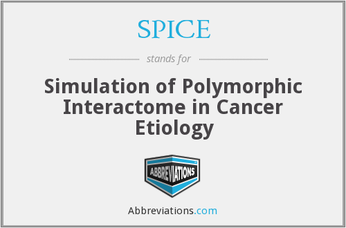 SPICE - Simulation of Polymorphic Interactome in Cancer Etiology