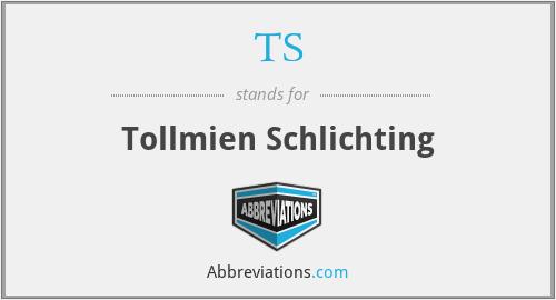 TS - Tollmien Schlichting