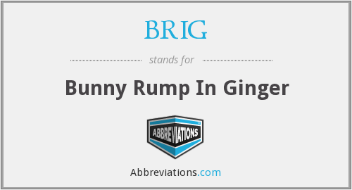 BRIG - Bunny Rump In Ginger