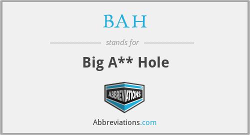 BAH - Big A** Hole