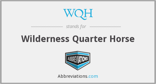 WQH - Wilderness Quarter Horse
