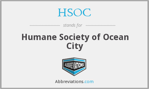 HSOC - Humane Society of Ocean City