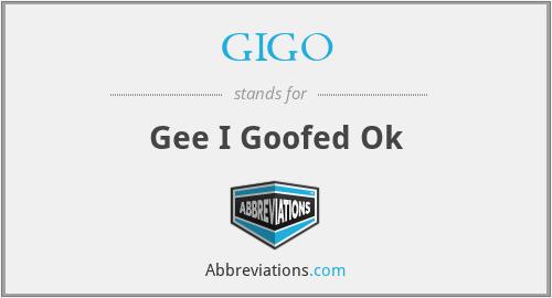 GIGO - Gee I Goofed Ok