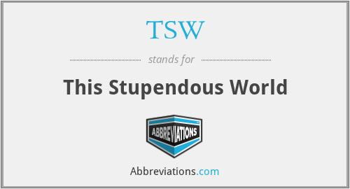 TSW - This Stupendous World