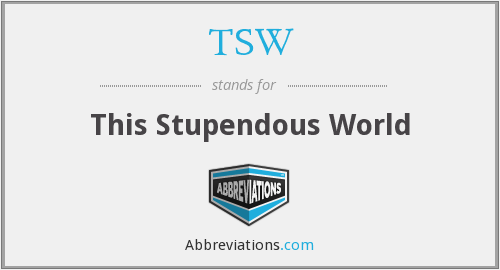 What does stupendous stand for?