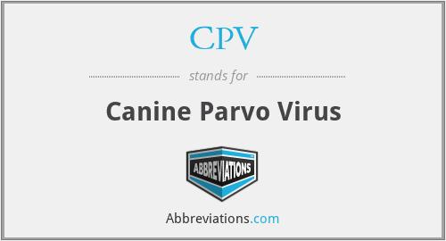 CPV - Canine Parvo Virus