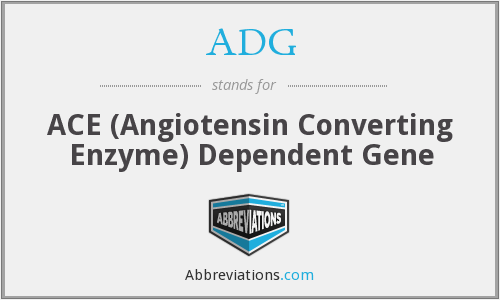 ADG - ACE (Angiotensin Converting Enzyme) Dependent Gene