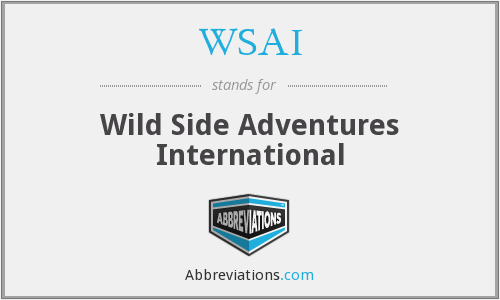 What does WSAI stand for?