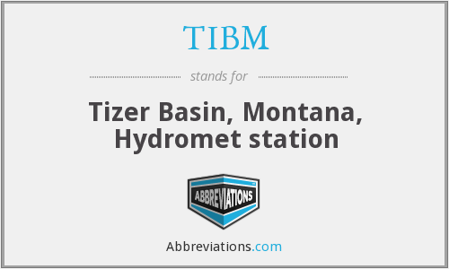 What does TIBM stand for?