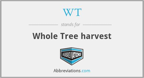 WT - Whole Tree harvest