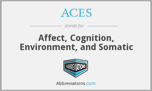 ACES - Affect, Cognition, Environment, and Somatic